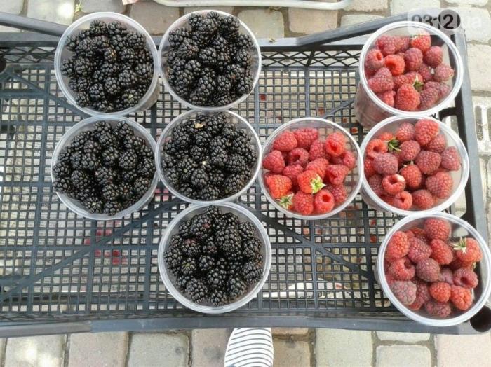 Супермаркет чи ринок? За скільки і де в Ужгороді можна поласувати фруктами