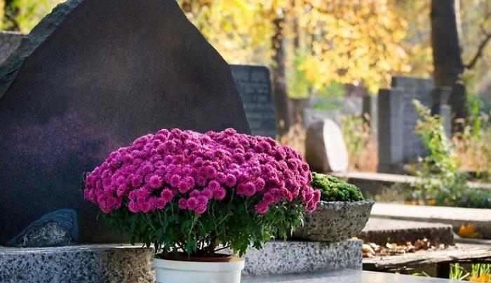 Священики закликають вірян-закарпатців не нести на цвинтар пластикові квіти
