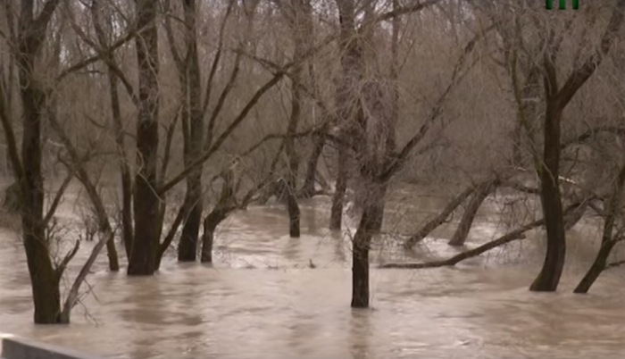 Розгул стихії на Закарпатті: підтоплені дороги та господарства
