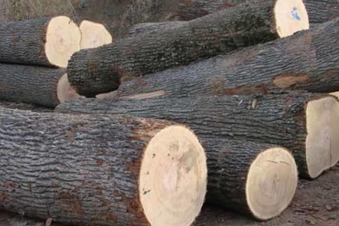 У Сваляві двоє крадіїв поцупили дрова з деревообробного підприємства