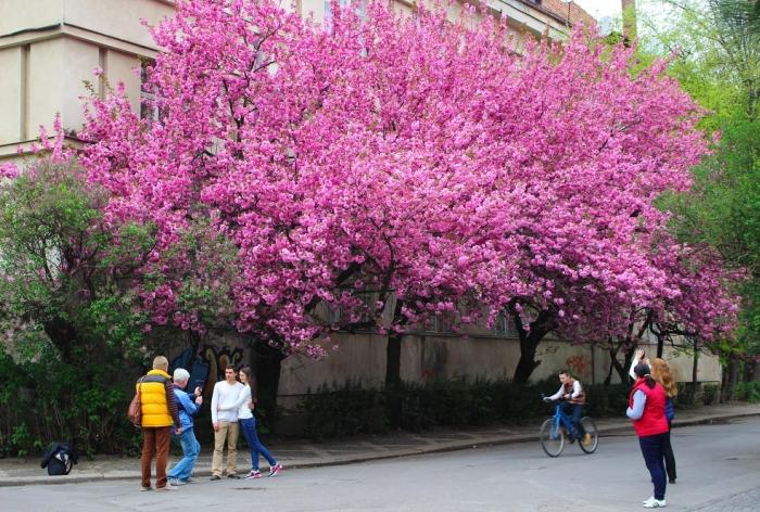Весняний потік туристів вже готова прийняти Срібна Земля