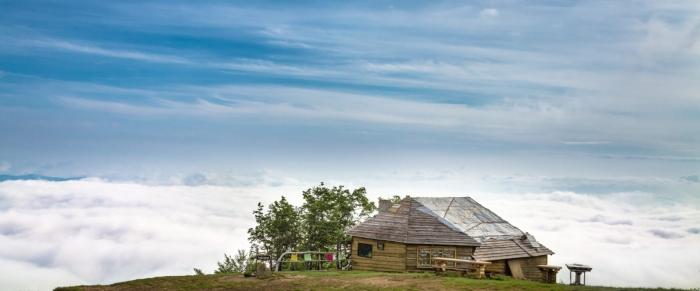 Про закарпатський чай, мрію і щасливих людей на горі Гемба