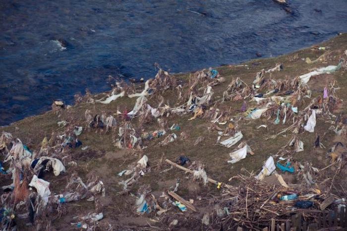 Туристам вже набридло дивитися на засмічену Міжгірщину – взялися за прибирання