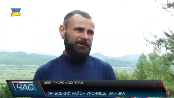 Закарпатські  знахарі заготовляють квітучі рослини у горах Тячівщини