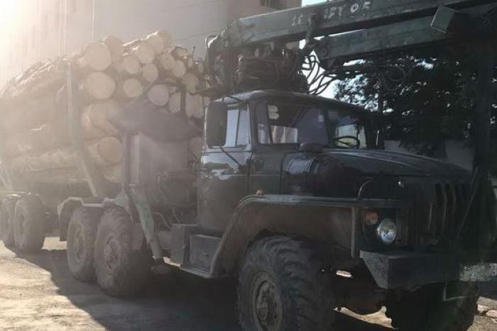 На Тячівщині поліція затримала «Урал» з майже 50 кубічними метрами деревини без чіпів