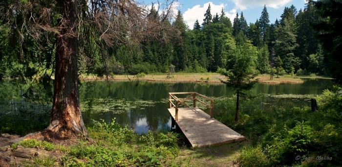 Справжня унікальна перлина на Закарпатті – Дике озеро або Озірце