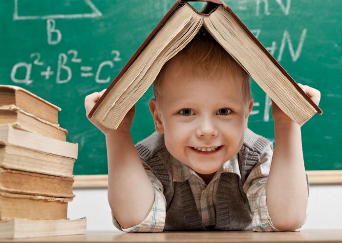 Навчання по-новому: на Закарпатті за новою системою вчаться і школярі, і вчителі