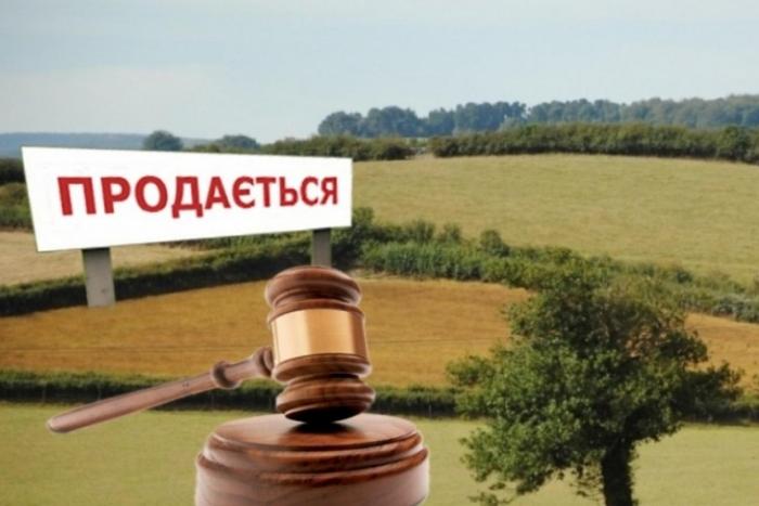 На земельні торги в Закарпатті виставлені 54 земельні ділянки