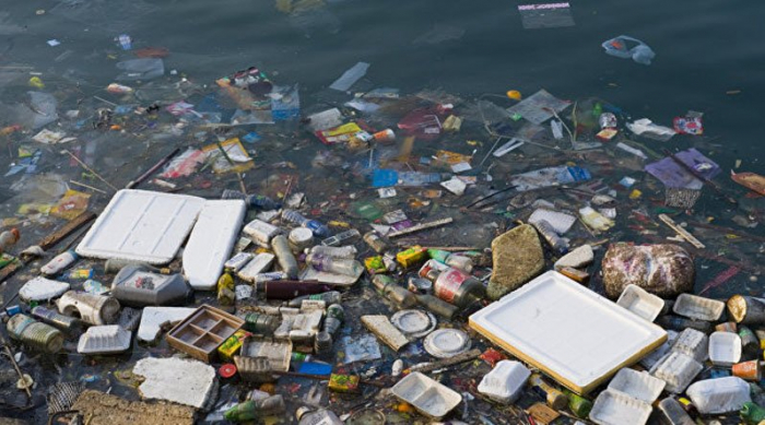 Забруднення річок на Закарпатті: як боротися за чистоту? (ВІДЕО)