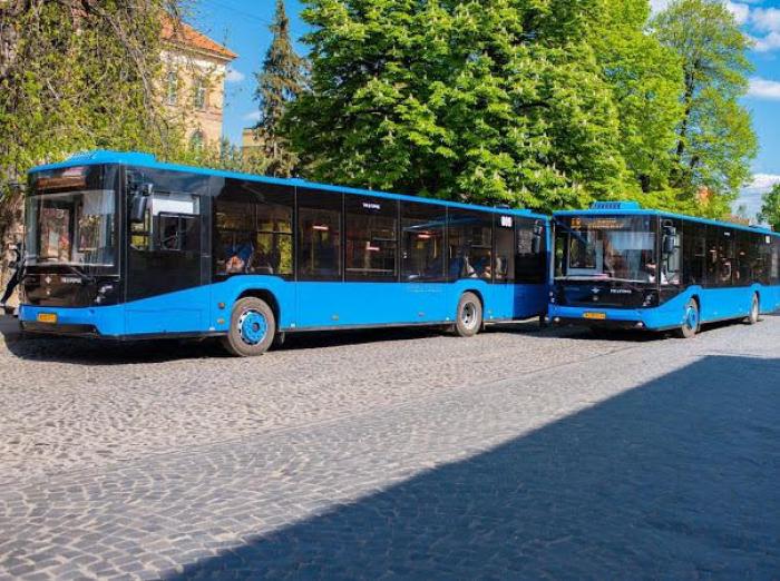 Як у Європі: в Ужгороді працює комфортабельний комунальний транспорт. Які перспективи?